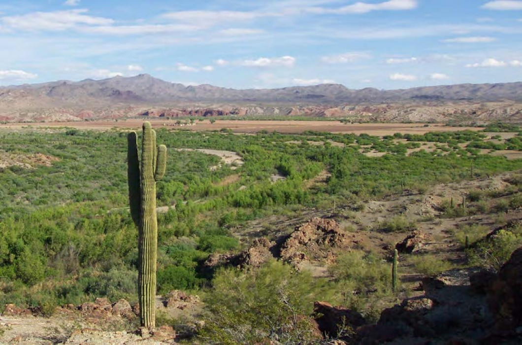 Bill Williams National Wildlife Refuge, Arizona. The Bill Williams River drains more than 5,200 square miles of rugged, mountainous terrain in west-central Arizona.