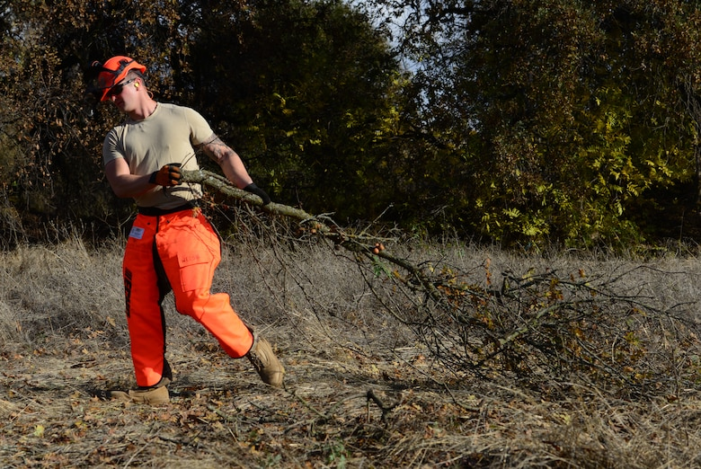 Lumber jacks of all trades: 9th CES Dirt Boyz cut trees, clear brush