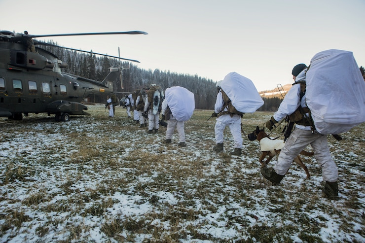 U.S. Marines with 2nd Air Naval Gunfire Liaison Company and Norwegian Soldiers proceed to board Dutch helicopter in order to be dropped off at a forward observation position during cold-weather training at Haltdalen, Norway, Oct. 28, 2018. Trident Juncture 2018 enhances the U.S. and NATO Allies' and partners' abilities to work together collectively to conduct military operations under challenging conditions. (U.S. Marine Corps photo by Cpl. David Delgadillo)