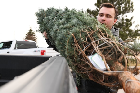 Airman 1st Class Aaron Jude, a 28th Civil Engineer Squadron fire protection apprentice, loads a tree into a truck at Ellsworth Air Force Base, S.D., Nov. 30, 2018. Trees for Troops is an event where community members all over the country donate trees to service members so they can have a free tree for the holidays. (U.S. Air Force photo by Airman 1st Class Thomas Karol)