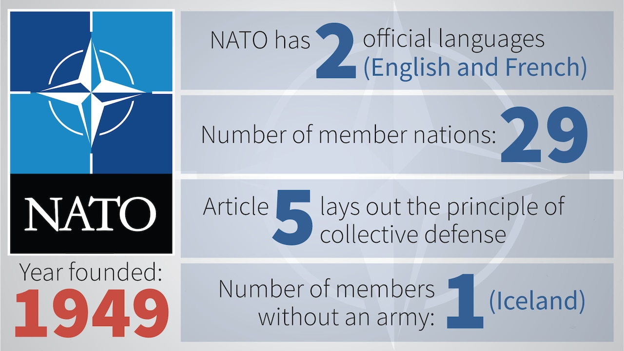 Graphic lists basic NATO Facts