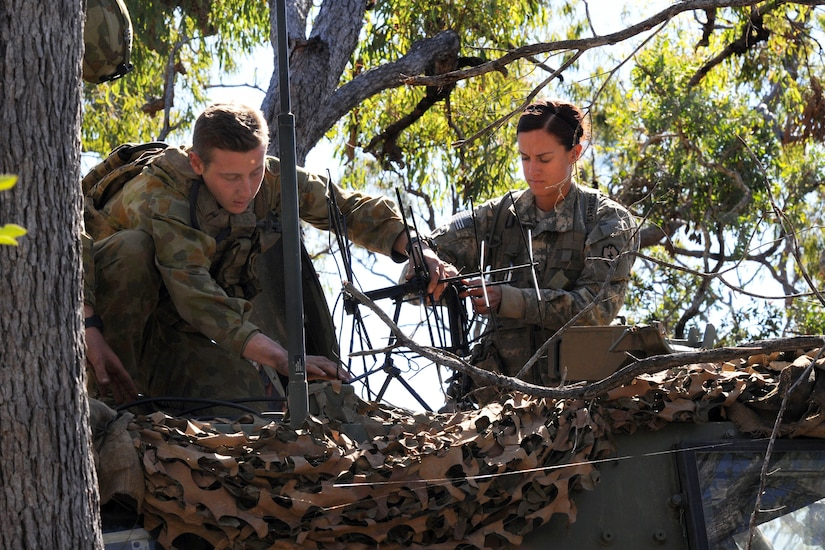 A male soldier and a female soldier set up an antenna in a tree.