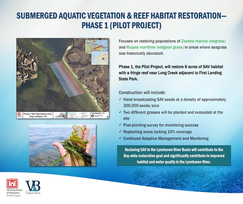Phase 1, the Pilot Project, will restore 6 acres of SAV habitat with a fringe reef near Long Creek adjacent to First Landing State Park.