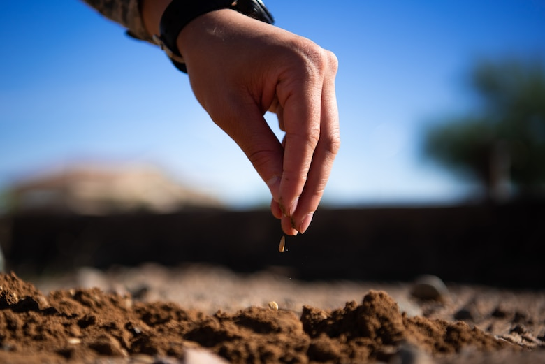 An Airman assigned to the 56th Fighter Wing sprinkles seeds into the dirt at the base community garden, Oct. 9, 2018 at Luke Air Force Base, Ariz.