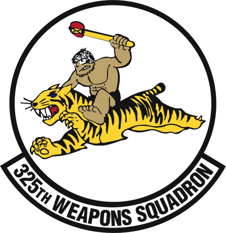 325th Weapons Squadron patch