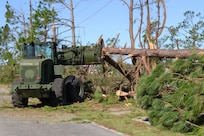 Florida National Guard members of the 753rd Brigade Engineer Battalion, Alpha Co. from Tallahassee, Florida, clear roadways as part of the widespread debris cleanup Oct. 13, 2018, in Panama City, Florida.