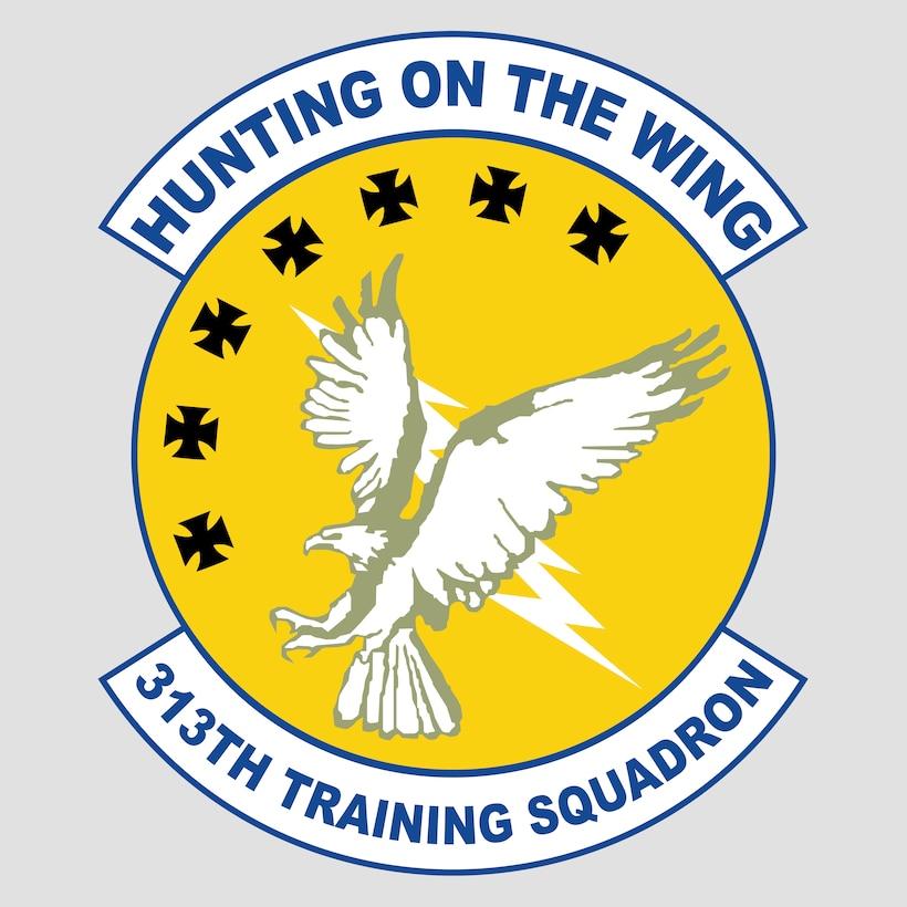 313th Training Squadron logo