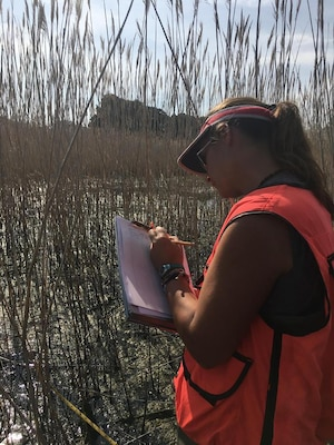 U.S. Army Corps of Engineers Biologist Katie Buckler conducts a wetland assessment in support of the Port Clinton Ecosystem Restoration Project.