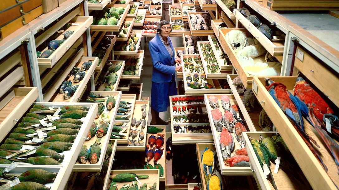Smithsonian Institution Feather Identification Lab