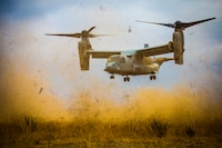 A U.S. Marine Corps MV-22 Osprey with Marine Medium Tiltrotor Squadron 163 provides casualty evacuation support during a field exercise at Marine Corps Base Camp Pendleton, Calif., Aug. 16, 2018. The FEX exposed battalion Marines to field conditions, and will prepare them to meet operational and training objectives in the upcoming year.