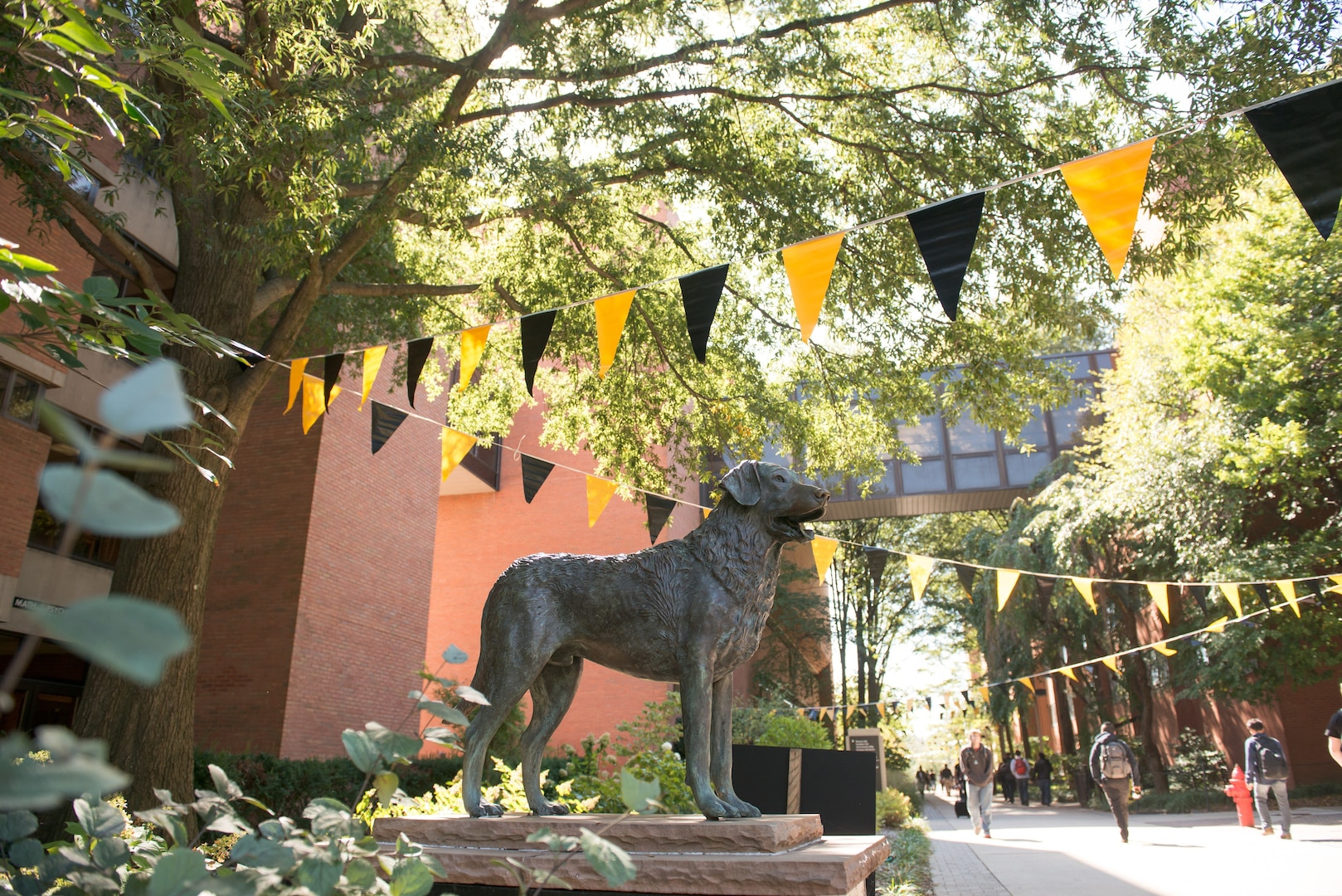 A bronze sculpture of UMBC's mascot True Grit, a Chesapeake Bay Retriever, stands proudly next to the main walking path between UMBC's academic buildings. Students can be seen walking on the path and there is canopy of trees and black and gold decorative flags overhead.