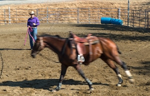 """Cutting is a western-style equestrian competition in which a horse and rider work as a team before a judge or panel of judges to demonstrate the horse's athleticism and ability to handle cattle during a 2 1⁄2 minute performance, called a """"run."""" Each contestant is assisted by four helpers: two are designated as turnback help to keep cattle from running off to the back of the arena, and the other two are designated as herd holders to keep the cattle bunched together and prevent potential strays from escaping into the work area."""