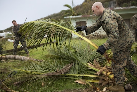 Marines and Sailors from Battalion Landing Team, 2nd Battalion, 5th Marines, and Combat Logistics Battalion 31, clean up debris after Typhoon Mangkhut as part of typhoon relief efforts in Rota, Commonwealth of the Northern Mariana Islands, Sept. 13, 2018.