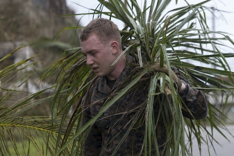 A Marine from the 31st Marine Expeditionary Unit cleans up debris after Typhoon Mangkhut during typhoon relief efforts in Rota, Commonwealth of the Northern Mariana Islands, Sept. 13, 2018.