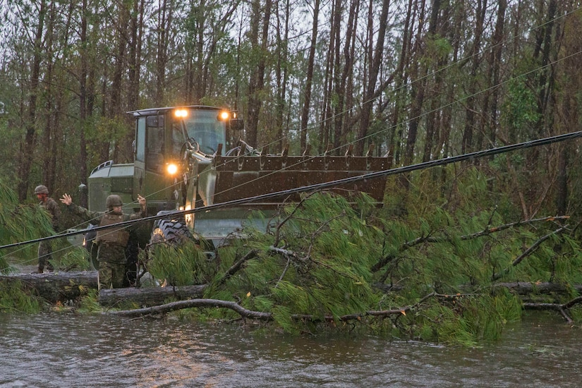 Marines remove a fallen tree laying power lines.