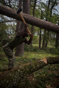 U.S. Marine Corps Lance Cpl. Jordan Thomas with Communications Company, Headquarters Regiment, 2nd Marine Logistics Group, chops a downed tree for removal at Camp Lejeune, N.C., Sept. 17, 2018. Recovery and repair efforts began on base Saturday, September 15, with the majority of efforts focused on clearing roadways and restoring power to critical areas aboard Camp Lejeune following Hurricane Florence. (U.S. Marine Corps photo by Sgt. Bethanie C. Sahms)