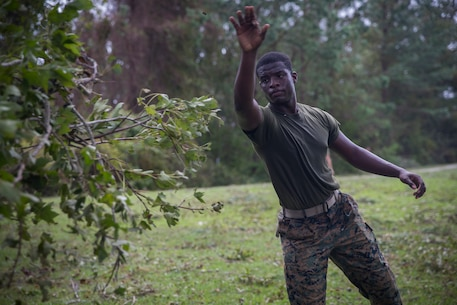 U.S. Marine Corps Cpl. Demarcus Robinson with Service Company, Headquarters Regiment, 2nd Marine Logistics Group, tosses broken tree branches into a pile at Camp Lejeune, N.C., Sept. 17, 2018. Recovery and repair efforts began on base Saturday, September 15, with the majority of efforts focused on clearing roadways and restoring power to critical areas aboard Camp Lejeune following Hurricane Florence. (U.S. Marine Corps photo by Sgt. Bethanie C. Sahms)