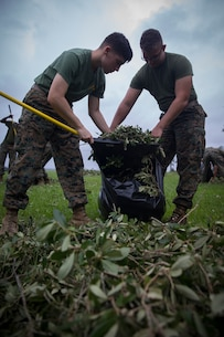U.S. Marines with Headquarters Regiment, 2nd Marine Logistics Group, bag up broken tree branches and debris at Camp Lejeune, N.C., Sept. 17, 2018. Recovery and repair efforts began on base Saturday, September 15, with the majority of efforts focused on clearing roadways and restoring power to critical areas aboard Camp Lejeune following Hurricane Florence. (U.S. Marine Corps photo by Sgt. Bethanie C. Sahms)