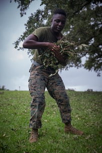 U.S. Marine Corps Cpl. Patrick Minott with Service Company, Headquarters Regiment, 2nd Marine Logistics Group, hauls away debris at Camp Lejeune, N.C., Sept. 17, 2018. Recovery and repair efforts began on base Saturday, September 15, with the majority of efforts focused on clearing roadways and restoring power to critical areas aboard Camp Lejeune following Hurricane Florence. (U.S. Marine Corps photo by Sgt. Bethanie C. Sahms)