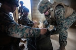 U.S. Marines with Criminal Investigation Division, 3rd Law Enforcement Battalion, III Marine Expeditionary Force, Information Group, secure forensic material they have gathered during tactical site exploitation training at Combat Town, Okinawa, Japan, Sept. 12, 2018. The CID utilizes TSE to gather as much forensic material as possible in a limited amount of time that could be used to provide crucial information on the enemy.