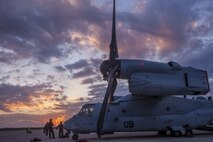 A U.S. Marine Corps MV-22B Osprey rests at Morón Air Base, Spain, March 29, 2019. The aircraft, from Marine Medium Tiltrotor Squadron 261, will serve as the aviation combat element for Special Purpose Marine Air-Ground Task Force-Crisis Response-Africa 19.2, Marine Forces Europe and Africa, as they prepare to take authority from 19.1 for operations within the area of responsibility. SPMAGTF-CR-AF is deployed to conduct crisis-response and theater-security operations in Africa and promote regional stability by conducting military-to-military training exercises throughout Europe and Africa.