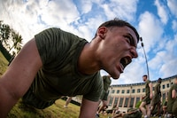 Sgt. Joseph Torres, the noncommissioned officer in charge of quality assurance with Installation Personnel Administration Center, Marine Forces Reserve, holds a low plank at Marine Corps Support Facility New Orleans, March 29, 2019, during a Total Force Fitness event. The MARFORRES Marines conducted various physical activities, such as tug-of-war, buddy carries, high-intensity suicide drills, medicine ball exercises and the dissemble and assembly of a M4 Service Carbine. The event promoted physical fitness, unit cohesion and esprit de corps.