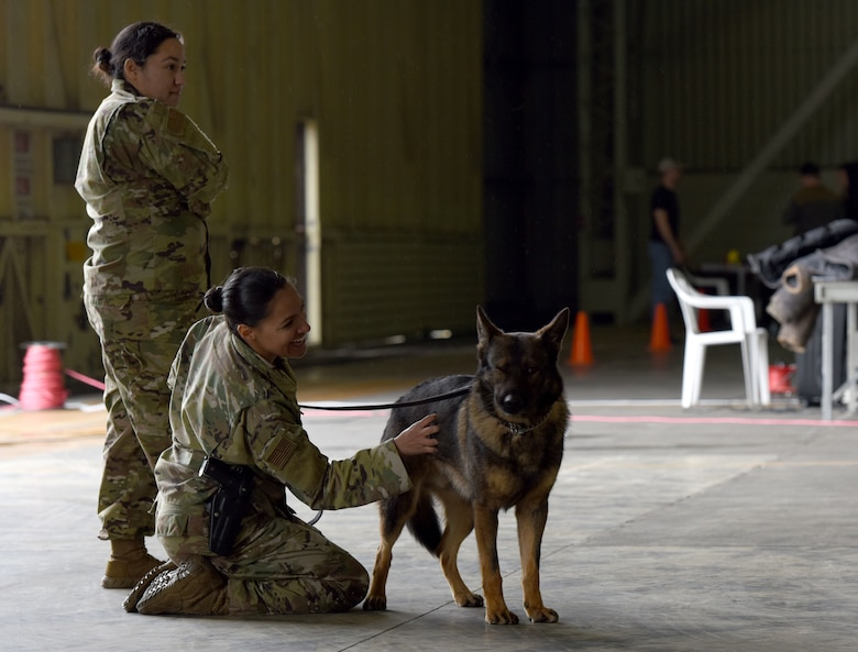 Staff Sgt. Cristina Alamo, 39th Security Forces Squadron military working dog handler interacts with MWD, Dollar, prior to a K-9 demo during Airman Appreciation Day March 29, 2019, at Incirlik Air Base, Turkey.