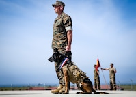 U.S. Marine Corps Staff Sgt. John Koman, multi-purpose canine handler with Delta Company, 1st Marine Raider Support Battalion, U.S. Marine Corps Forces Special Operations Command, awaits command during the retirement ceremony of his multi-purpose canine, Roy, at Marine Corps Base Camp Pendleton, California, March 29, 2019. Koman and Roy have served together with 1st MRSB for five years. Upon his retirement, Roy was adopted by Koman.