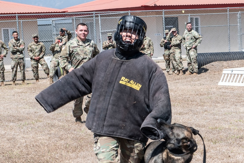 U.S. Army Pfc. Jason Dingler, Joint Security Forces military working dog handler, watches as his canine, Greco, takes down Spc. Young Won Ham, Medical Element preventive medicine technician, during a demonstration at Soto Cano Air Base, Honduras, March 27, 2019.