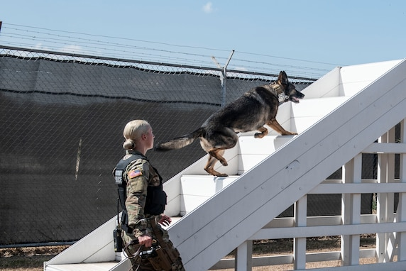 U.S. Army Pfc. Kristy Mundaniohl, Joint Security Forces military working dog (MWD) handler, runs her canine, Lara, through the kennel obstacle course at Soto Cano Air Base, Honduras, March 27, 2019.
