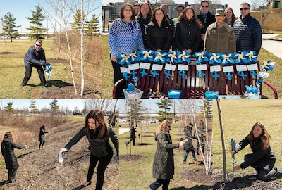 A collage of images showing individuals placing blue pinwheels and spreading flower seeds by trees.