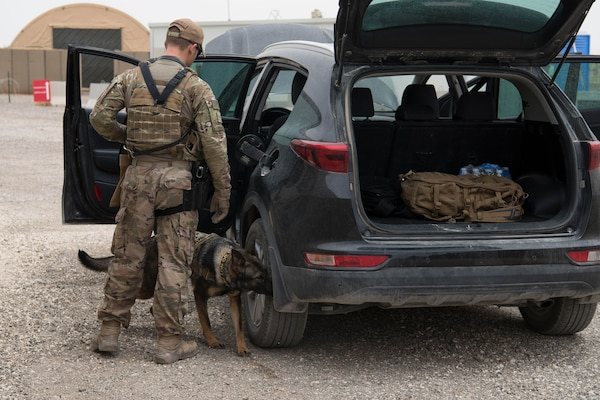 Senior Airman Eliot Tremblay, 332nd Expeditionary Security Forces Squadron military working dog handler, and his MWD partner, Afra, searches a car for possible explosives during an exercise at an undisclosed location in Southwest Asia, May 28, 2018.