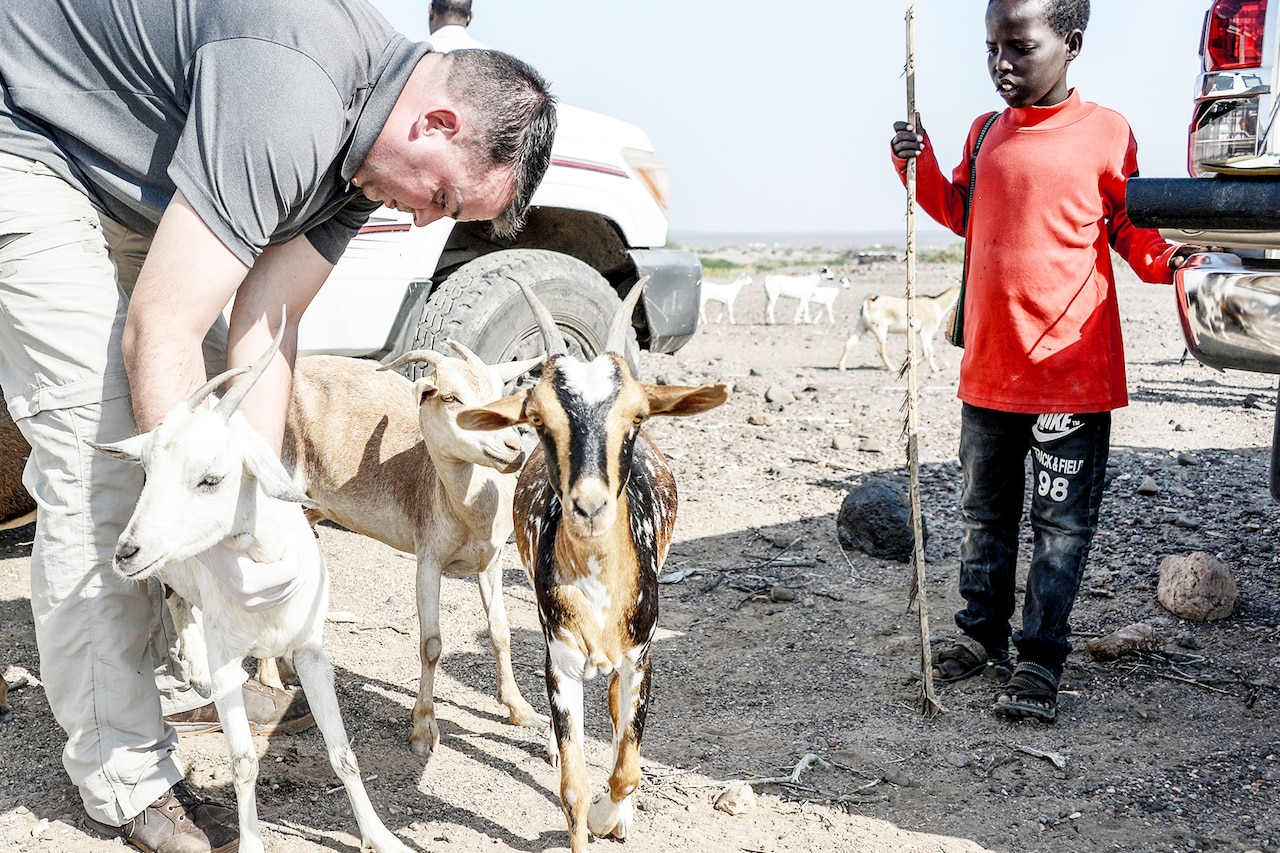 A boy watches as a veterinarian checks one of three goats in a barren field.
