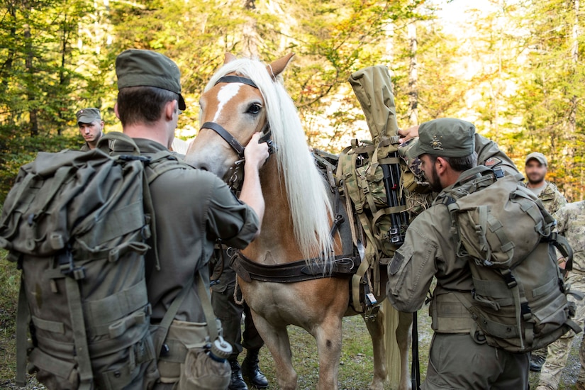 Soldiers work with a horse