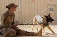 Air Force Staff Sgt. Cory Ruge, military working dog handler, 386th Expeditionary Security Forces Squadron, screens military working dog, Rogane, a German Shepherd who does single purpose explosive detection, during Chemical, Biological, Radiological, or Nuclear (CBRN) decontamination training in Kuwait, April 11, 2019. Members of the 637th Chemical Company, the 719th Medical Detachment Veterinary Service Support, and the 386th Expeditionary Security Forces Squadron came together to conduct a live exercise to train to save the lives of military working dogs and their handlers in the event they were exposed to a CBRN substance. Live training events help prepare service members for real world events which may require them to recall the skills they learned in training to stay in the fight and survive.