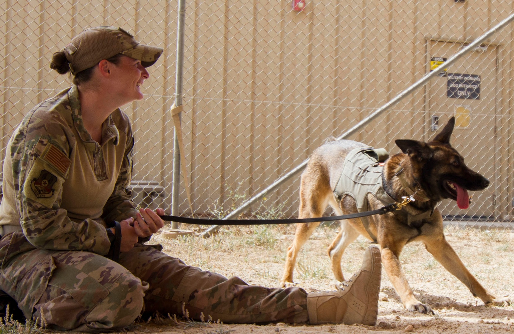 Air Force Staff Sgt. Porschia Easom, military working dog handler, 386th Expeditionary Security Forces Squadron, plays with her military working dog, Beki, a Belgian Malinois that does bite work and finds explosives, in preparation to conduct chemical, biological, chemical, or nuclear (CBRN) decontamination training in Kuwait April 11, 2019. Members of the 637th Chemical Company, the 719th Medical Detachment Veterinary Service Support, and the 386th Expeditionary Security Forces Squadron came together to conduct a live exercise to train to save the lives of military working dogs and their handlers in the event they were exposed to a CBRN substance. Live training events help prepare service members for real world events which may require them to recall the skills they learned in training to stay in the fight and survive.