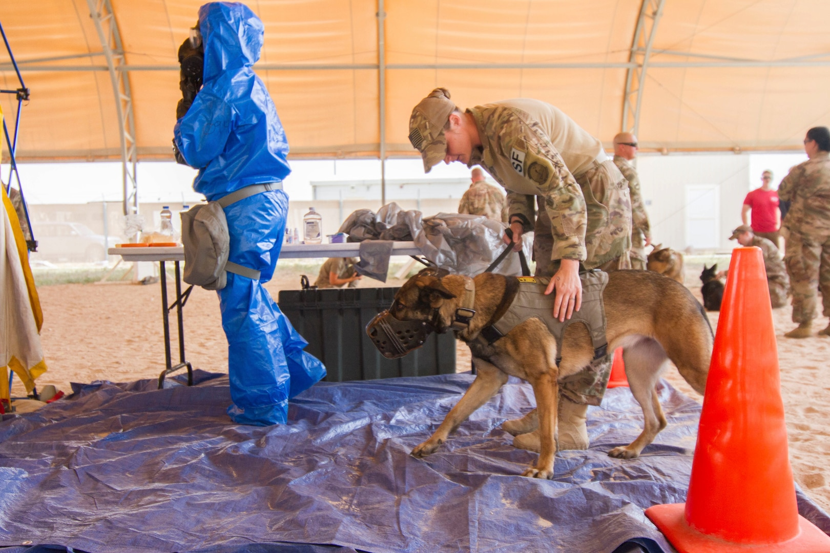 Air Force Staff Sgt. Porschia Easom, military working dog handler, 386th Expeditionary Security Forces Squadron, leads her military working dog, Beki, a Belgian Malinois that does bite work and finds explosives, to the decontamination area to conduct chemical, biological, radiological , or nuclear (CBRN) decontamination training in Kuwait April 11, 2019. Members of the 637th Chemical Company, the 719th Medical Detachment Veterinary Service Support, and the 386th Expeditionary Security Forces Squadron came together to conduct a live exercise to train to save the lives of military working dogs and their handlers in the event they were exposed to a CBRN substance. Live training events help prepare service members for real world events which may require them to recall the skills they learned in training to stay in the fight and survive.