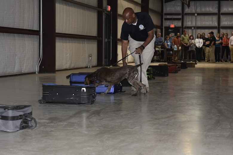 Clark Young, Transportation Security Administration trainer, takes his explosives detection dog Bina through a training exercise at TSA's canine training center on JBSA-Lackland, Texas, April 17, 2019. Every year, TSA trains about 250 canine teams at JBSA-Lackland to operate in the aviation, multimodal, mass transit, and cargo environments. (U.S. Air Force photo by Shannon Carabajal)