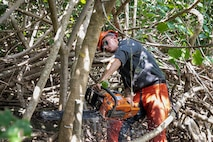 U.S. Marine Corps Lance Cpl. John White, team leader with Combat Assault Company, 3d Marine Regiment, saws through an invasive tree with a chainsaw during the Hamakua Marsh community service project, Kailua, Hawaii, Apr. 16, 2019. The Marines volunteered to assist in the Hamakua Marsh community service project. They worked to restore a native forest by removing invasive plants. (U.S. Marine Corps photo by Sgt. Zachary Orr)
