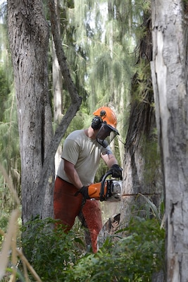 Staff Sgt. Denniz Petzold, 103rd Civil Engineer Squadron, saws through an Ironwood tree at Bellows Air Force Station, Waimanalo, Hawaii April 8, 2019. Several trees are being cleared to augment recreational areas, improving quality of life programs on Bellows.