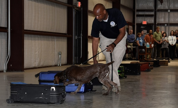 Clark Young, Transportation Security Administration trainer, takes his explosives detection dog Bina through a training exercise at TSA's canine training center on Joint Base San Antonio-Lackland April 17. Every year, TSA trains about 250 canine teams at JBSA-Lackland to operate in the aviation, multimodal, mass transit, and cargo environments.
