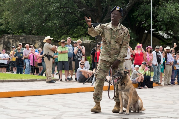 Staff Sgt. Wilson Brantley, 802nd Security Forces Squadron military working dog handler, performs a K-9 demonstration during San Antonio's Fiesta Air Force Day at the Alamo, April 22, 2019. From its beginning in 1891, Fiesta has grown into an annual celebration that includes civic and military observances, street and river parades, exhibits, pilgrimages and memorials.
