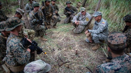 Military personnel train in the jungle.