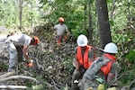 Wisconsin National Guard Soldiers and Airmen help clear storm debris in Barron County, Wis., July 30.