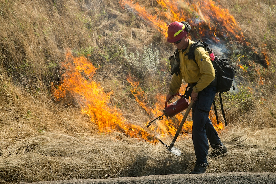 Firefighters with Oceanside Fire Department and the Camp Pendleton Fire Department initiate prescribed burns at Ranges 108 and 109 on Marine Corps Base Camp Pendleton, California, June 12, 2019. The CPFD encounters several wildfires each year. Prescribed burns are one of the many methods used to mitigate the unwanted spread of wildfires on the installation.