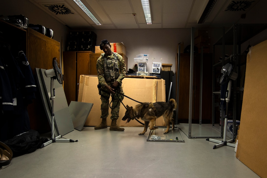 U.S. Air Force Senior Airman Victor Henderson, 52nd Security Forces Squadron military working dog handler, and Bora, an MWD, conduct detection training at Spangdahlem Air Base, Germany, Aug. 1, 2019. This type of training is routinely done at various locations on base to prepare MWDs to be able to search for drugs or explosives in any scenario. (U.S. Air Force photo by Airman 1st Class Valerie Seelye)