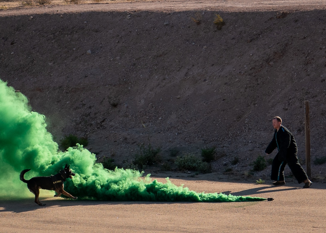 Staff Sgt. Sean McFadden, 56th Security Forces Squadron military working dog handler, evades a MWD through a smoke grenade Aug. 2, 2019, in Surprise, Ariz.
