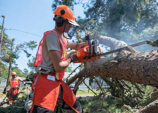 Airman cuts branch with chainsaw from fallen pine tree.