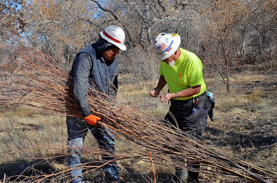 Biologists and natural resources managers with the U.S. Army Corps of Engineers, Albuquerque District, participated in a hands-on riparian construction workshop at the Corps of Engineers Cochiti Lake and Dam recently. Click below to find out more.