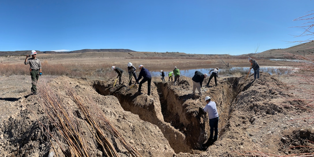 COCHITI LAKE, N.M. - Participants work to dig a heron foot trench at Cochiti Lake during the hands-on riparian construction workshop held February 26-27. The trench is being dug in preparation for planting the freshly-cut willow and cottonwood plantings. The heron foot trench, which resembles the shape of a heron's footprint, was accomplished using a backhoe.